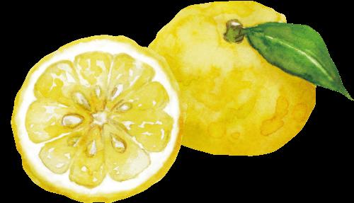 ゆうこう果実
